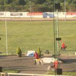 Greyhound Racing Cork