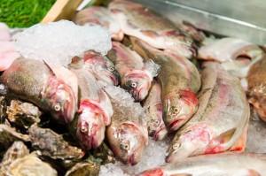 Fresh Fish at the English Market in Cork City